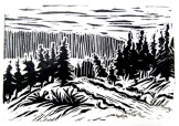 Lino-cut print of the Iditarod exit trail out of Koyuk.