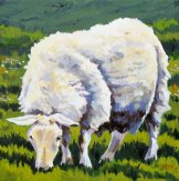"""Ewe Look Marvelous"" 12x12, Oil"